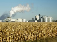Grassley: biofuels causing food price hikes a myth